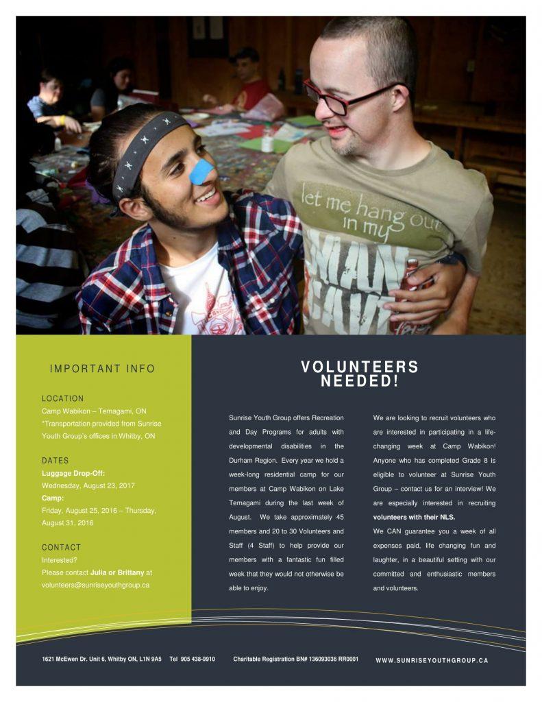 Wabi volunteer recruitment flyer 2017-1