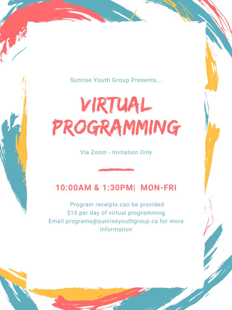 Virtual-Programming-1